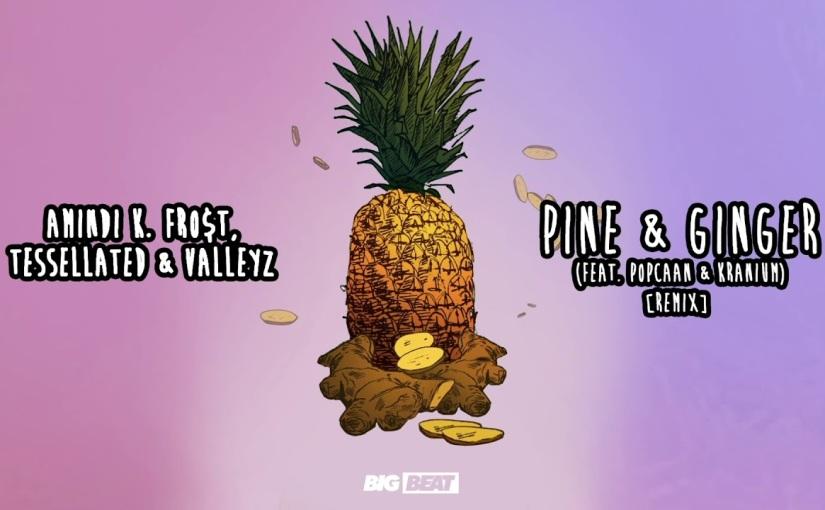 Amindi, Tessellated & Valleyz ft. Popcaan and Kranium– 'Pine & Ginger(Remix)'